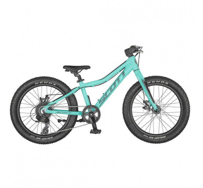 Scott Roxter 20 teal blue (One Size) bicycle